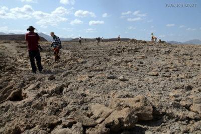 Et13095-Danakil 3-skamieniałe kolalowce