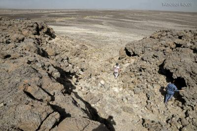Et13098-Danakil 3-skamieniałe kolalowce