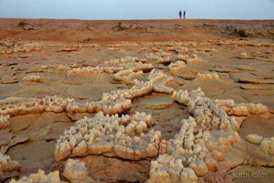 Et14032-Danakil 4-na polu siarkowym Dallol