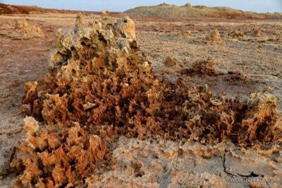 Et14046-Danakil 4-na polu siarkowym Dallol