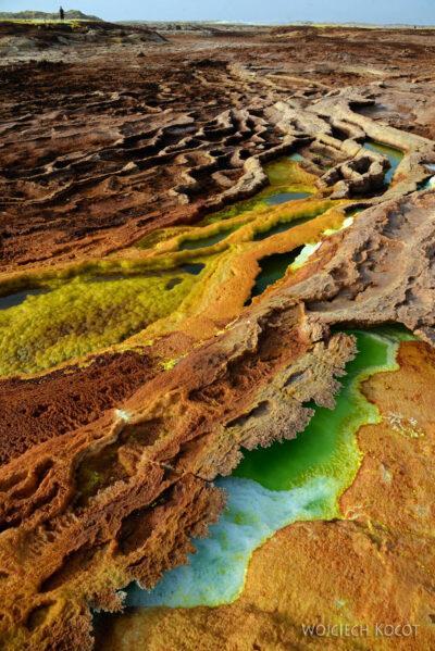 Et14135-Danakil 4-na polu siarkowym Dallol