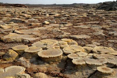 Et14255-Danakil 4-na polu siarkowym Dallol
