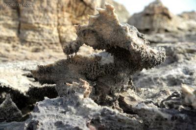 Et14268-Danakil 4-na polu siarkowym Dallol