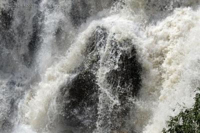 Et19016-Awash National Park