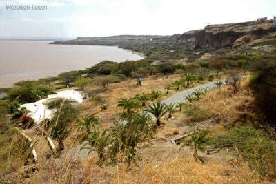Et20227-Nad Lake Langano