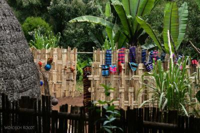 Et21046-W wiosce Dorze-bambus