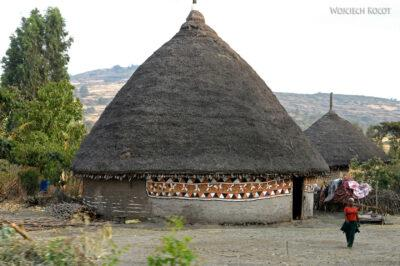 Et25137-W drodze do Butajira-domy