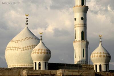 Et25164-W drodze do Butajira-meczet