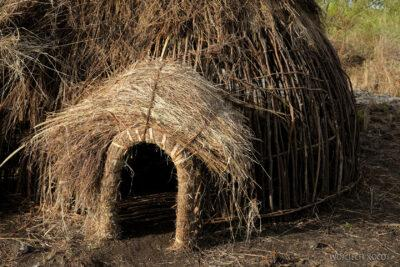 Et24089-Korokoro-Wioska plemienia Mursi-domy