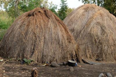 Et24093-Korokoro-Wioska plemienia Mursi-domy