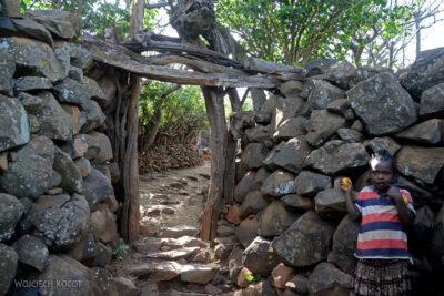 Et24216-W wiosce Gamole plemienia Konso