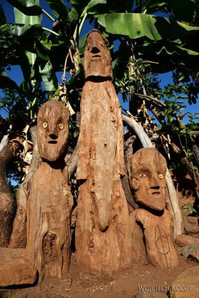 Et24219-W wiosce Gamole plemienia Konso