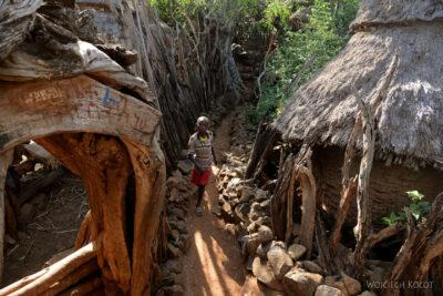 Et24234-W wiosce Gamole plemienia Konso