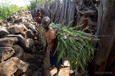 Et24242-W wiosce Gamole plemienia Konso
