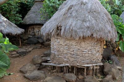 Et24245-W wiosce Gamole plemienia Konso-domy