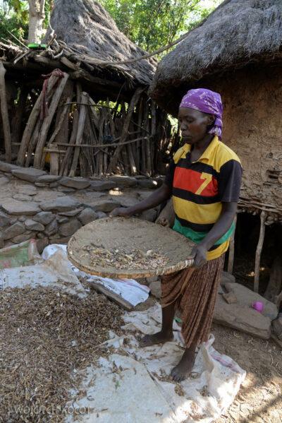 Et24255-W wiosce Gamole plemienia Konso