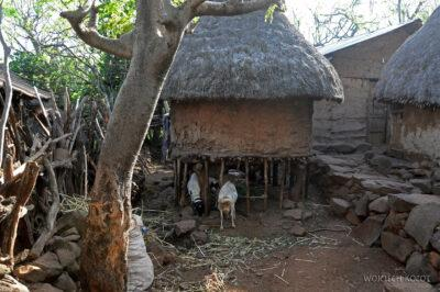 Et24272-W wiosce Gamole plemienia Konso