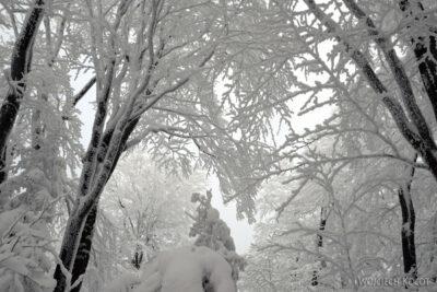 1-Śnieżnica06